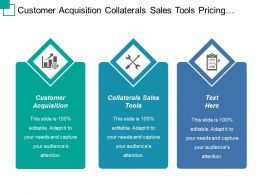 Customer Acquisition Collaterals Sales Tools Pricing Packaging Personas Scenarios