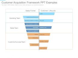 Customer Acquisition Framework Ppt Examples