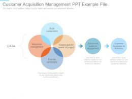 Customer Acquisition Management Ppt Example File