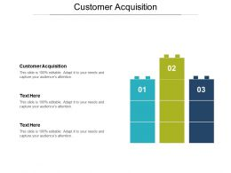 Customer Acquisition Ppt Powerpoint Presentation File Slide Portrait Cpb