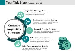 Customer Acquisition Strategies Powerpoint Slide Information