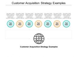 Customer Acquisition Strategy Examples Ppt Powerpoint Presentation Styles Elements Cpb