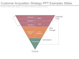 Customer Acquisition Strategy Ppt Examples Slides