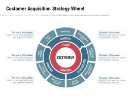 Customer Acquisition Strategy Wheel
