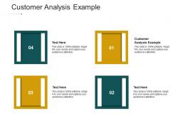 Customer Analysis Example Ppt Powerpoint Presentation Inspiration Clipart Images Cpb