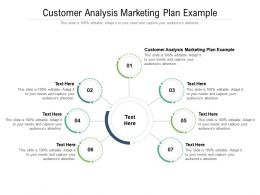 Customer Analysis Marketing Plan Example Ppt Powerpoint Presentation Styles Slide Cpb