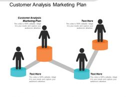 Customer Analysis Marketing Plan Ppt Powerpoint Presentation Summary Show Cpb