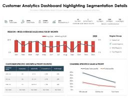 Customer Analytics Dashboard Highlighting Segmentation Details