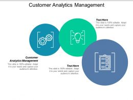 Customer Analytics Management Ppt Powerpoint Presentation Summary Format Ideas Cpb