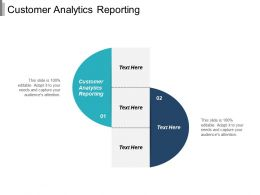Customer Analytics Reporting Ppt Powerpoint Presentation File Images Cpb