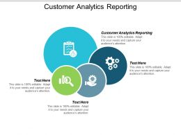 Customer Analytics Reporting Ppt Powerpoint Presentation Ideas Show Cpb