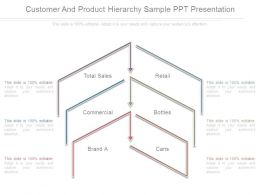 Customer And Product Hierarchy Sample Ppt Presentation