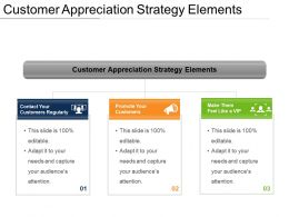 Customer Appreciation Strategy Elements PPT Design