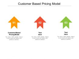 Customer Based Pricing Model Ppt Powerpoint Presentation Styles Layout Cpb