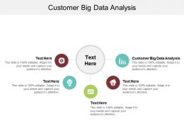 Customer Big Data Analysis Ppt Powerpoint Presentation Professional Graphics Cpb