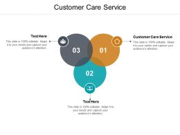 Customer Care Service Ppt Powerpoint Presentation Model Example Topics Cpb