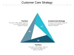 Customer Care Strategy Ppt Powerpoint Presentation Infographic Template Background Cpb