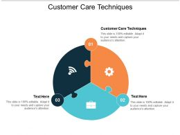 Customer Care Techniques Ppt Powerpoint Presentation Infographic Template Gallery Cpb