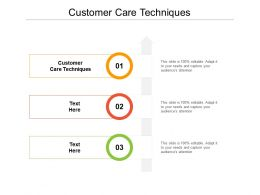 Customer Care Techniques Ppt Powerpoint Presentation Styles Graphics Design Cpb