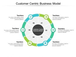 Customer Centric Business Model Ppt Powerpoint Presentation Outline Cpb