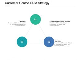 Customer Centric CRM Strategy Ppt Powerpoint Presentation Styles Grid Cpb