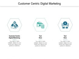Customer Centric Digital Marketing Ppt Powerpoint Presentation Styles Layout Cpb