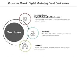 Customer Centric Digital Marketing Small Businesses Ppt Powerpoint Presentation File Example Topics Cpb