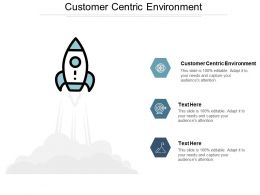 Customer Centric Environment Ppt Powerpoint Presentation Icon Example Introduction Cpb