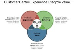 Customer Centric Experience Lifecycle Value