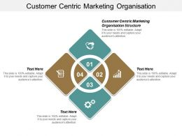 Customer Centric Marketing Organisation Structure Ppt Powerpoint Presentation Gallery Elements Cpb