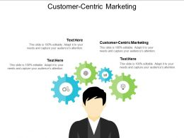 Customer Centric Marketing Ppt Powerpoint Presentation Gallery Graphics Example Cpb