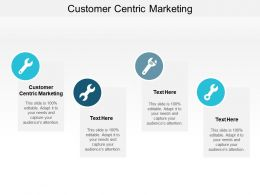 Customer Centric Marketing Ppt Powerpoint Presentation Gallery Infographics Cpb