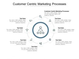 Customer Centric Marketing Processes Ppt Powerpoint Presentation Inspiration Show Cpb