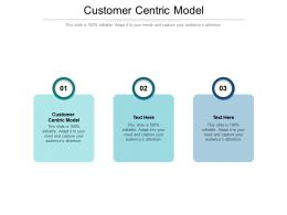 Customer Centric Model Ppt Powerpoint Presentation Ideas Cpb