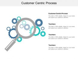 Customer Centric Process Ppt Powerpoint Presentation Show Diagrams Cpb