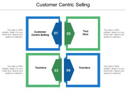 Customer Centric Selling Ppt Powerpoint Presentation Icon Example Topics Cpb