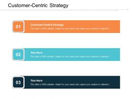 Customer Centric Strategy Ppt Powerpoint Presentation Icon Information Cpb