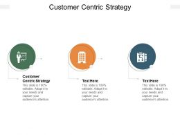Customer Centric Strategy Ppt Powerpoint Presentation Model Outfit Cpb