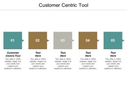 Customer Centric Tool Ppt Powerpoint Presentation File Example Topics Cpb