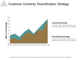 Customer Centricity Diversification Strategy Information Technology Strategy Framework Cpb