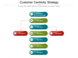 Customer Centricity Strategy Ppt Powerpoint Presentation Show Infographics Cpb