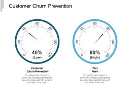 Customer Churn Prevention Ppt Powerpoint Presentation Infographics Layouts Cpb