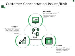 Customer Concentration Issues Risk Example Of Ppt