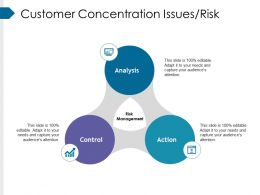 Customer Concentration Issues Risk Powerpoint Guide