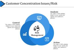 Customer Concentration Issues Risk Powerpoint Topics