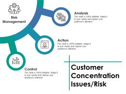 Customer Concentration Issues Risk Ppt Slides Examples