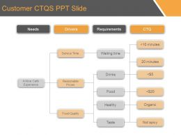 Customer Ctqs Ppt Slide