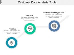 Customer Data Analysis Tools Ppt Powerpoint Presentation Portfolio Cpb