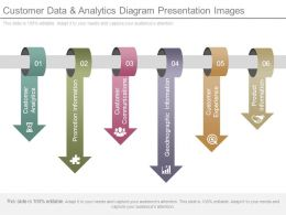 Customer Data And Analytics Diagram Presentation Images