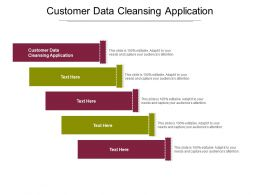 Customer Data Cleansing Application Ppt Powerpoint Presentation Professional Master Slide Cpb